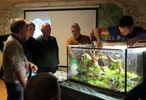 workshop aquascaping